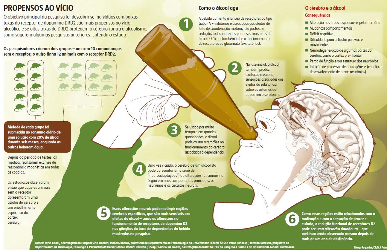 Álcool em excesso faz cérebro encolher