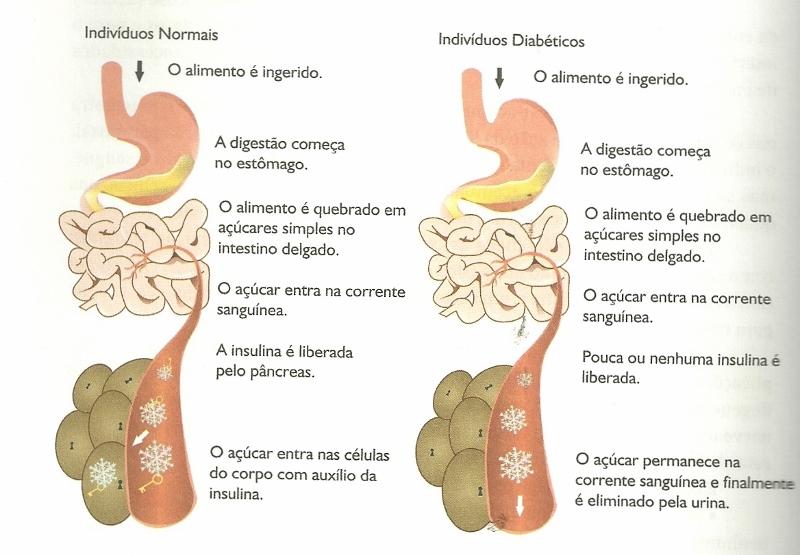 Emergências diabéticas: o que fazer?
