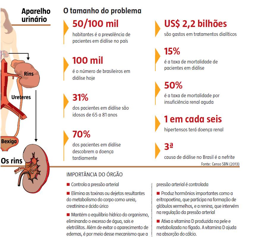 Insuficiência renal crônica afeta 15 milhões de brasileiros. Apenas 100 mil sabem