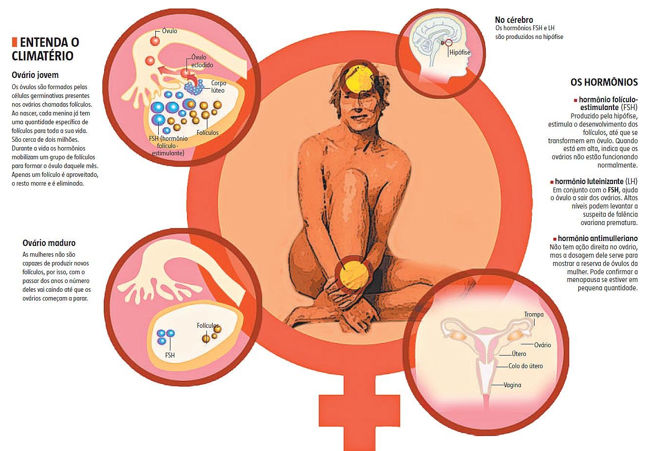 Menopausa e vida sexual prazerosa não são antagonistas
