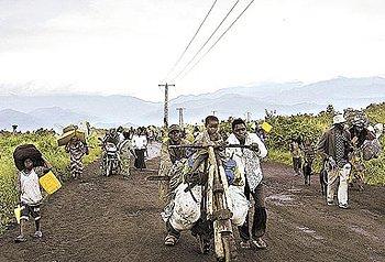 Teste detecta o ebola em até 60 minutos