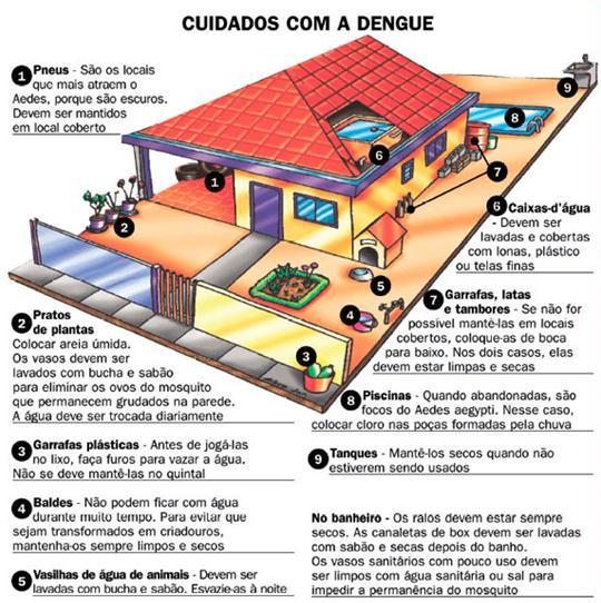 o que é dengue