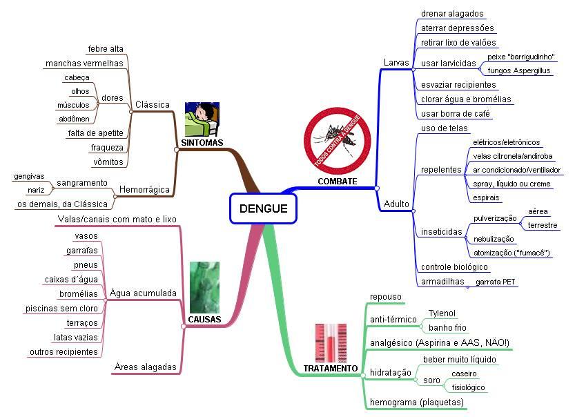Como prrvenir do mosquito da dengue